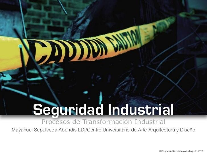 Seguridad Industrial             Procesos de Transformación IndustrialMayahuel Sepúlveda Abundis LDI/Centro Universitario ...