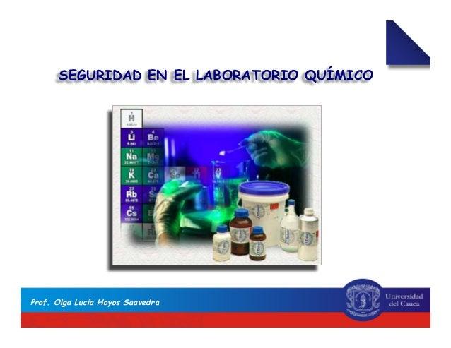SEGURIDAD EN EL LABORATORIO QUÍMICO Prof. Olga Lucía Hoyos Saavedra