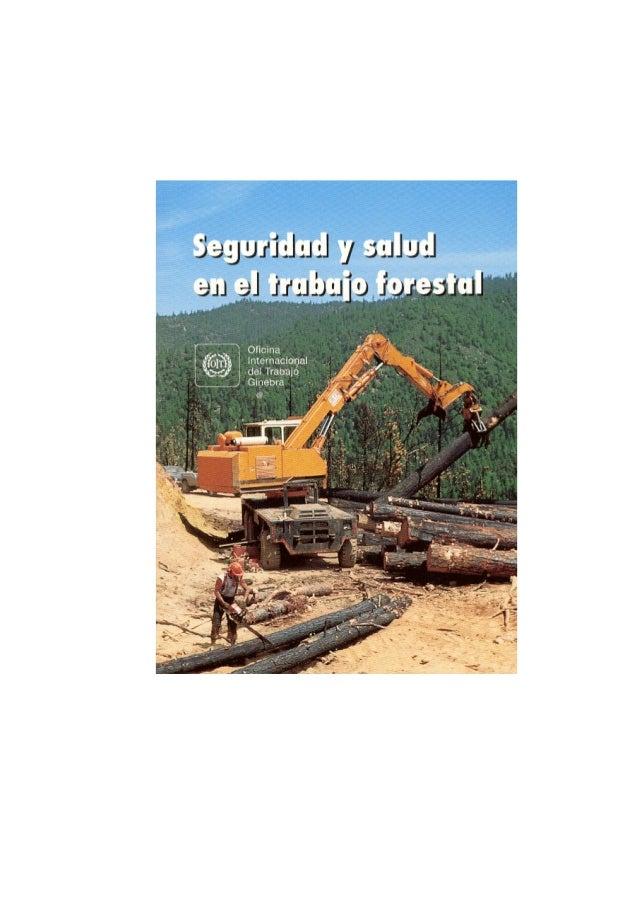 Seguridad y salud en el trabajo forestal