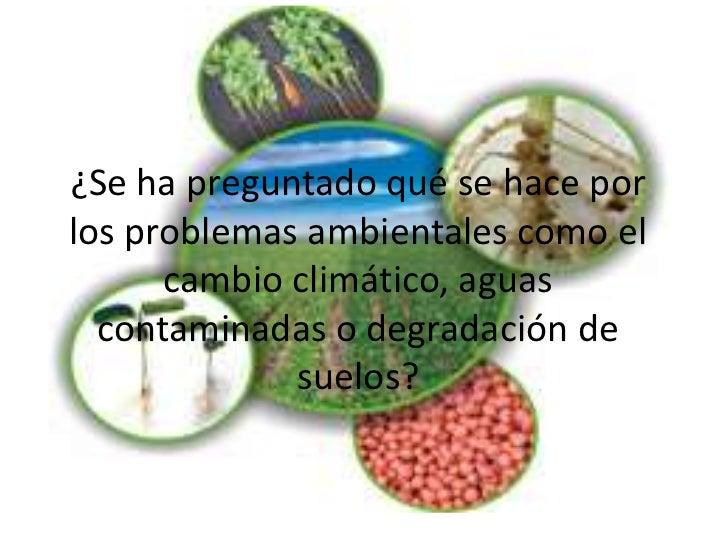 ¿Se ha preguntado qué se hace por los problemas ambientales como el cambio climático, aguas contaminadas o degradación de ...
