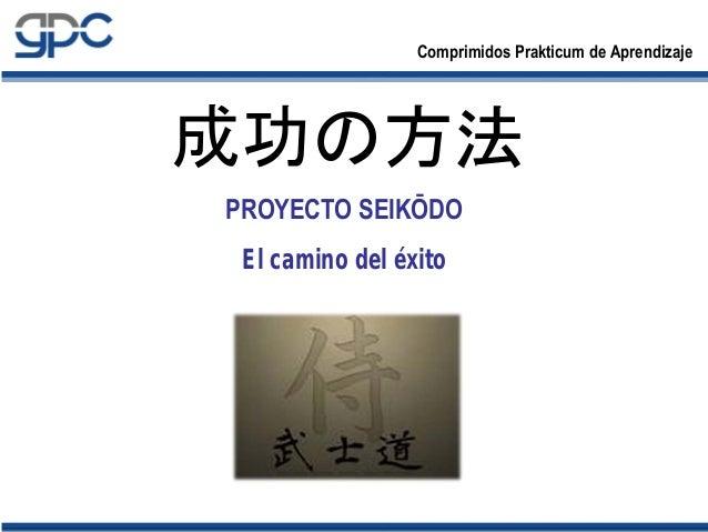 成功の方法PROYECTO SEIKŌDOEl camino del éxito   