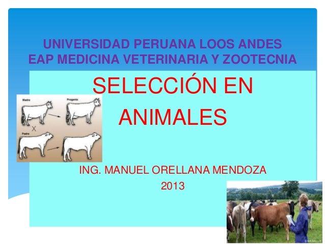 UNIVERSIDAD PERUANA LOOS ANDES EAP MEDICINA VETERINARIA Y ZOOTECNIA  SELECCIÓN EN ANIMALES ING. MANUEL ORELLANA MENDOZA 20...