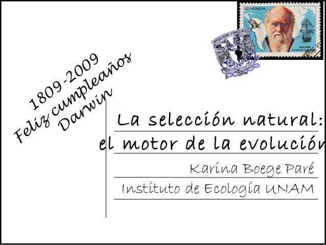 Karina Boege Paré Instituto de Ecología UNAM La selección natural: el motor de la evolución 1809-2009 Feliz cum pleaños D ...