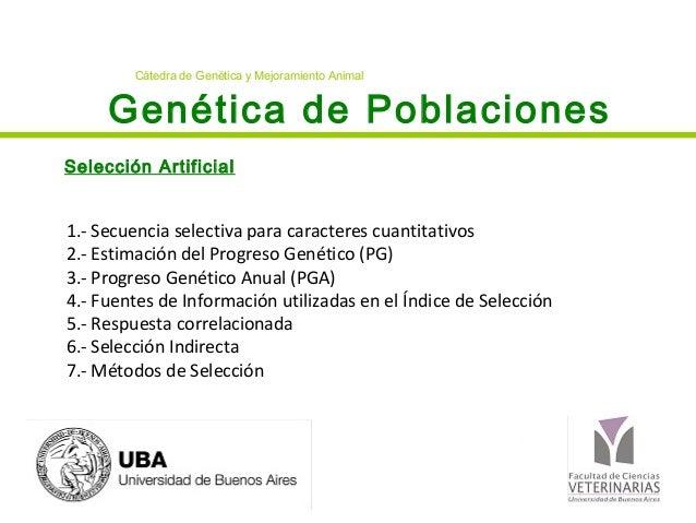 Genética de Poblaciones Selección Artificial Cátedra de Genética y Mejoramiento Animal 1.- Secuencia selectiva para caract...