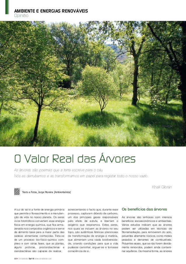 Opinião AMBIENTE E ENERGIAS RENOVÁVEIS O Valor Real das Árvores As árvores são poemas que a terra escreve para o céu Nós a...