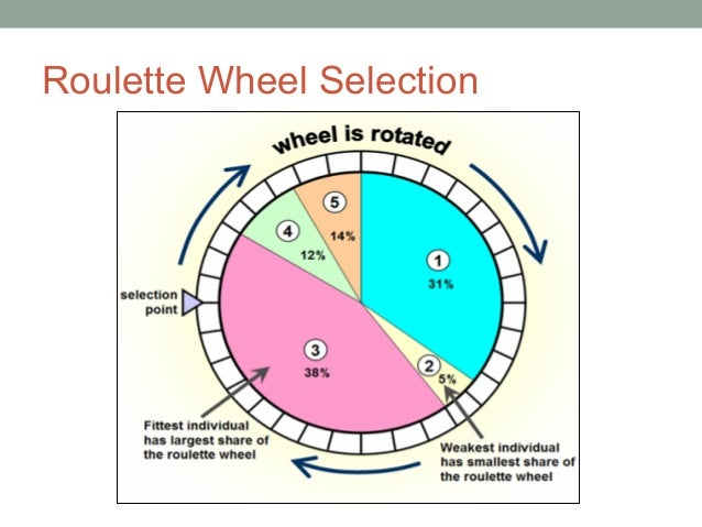 Roulette wheel selection source code