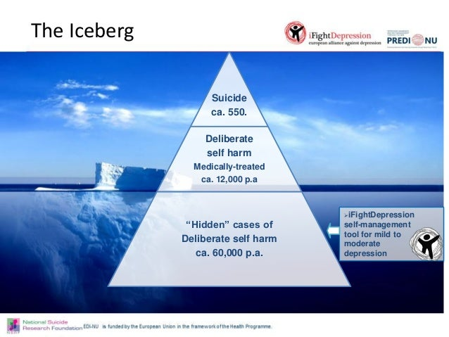 the iceberg theory All the food critics hate iceberg lettuce you'd think romaine was descended from opheus's laurel wreath, you'd think raw spinach had all the nutritional.