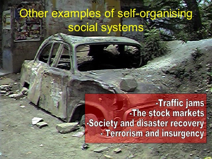 limits to self organising systems of What are the characteristics of a complex self-organising system that make it creative what can we learn from this about human creativity, both individual a.