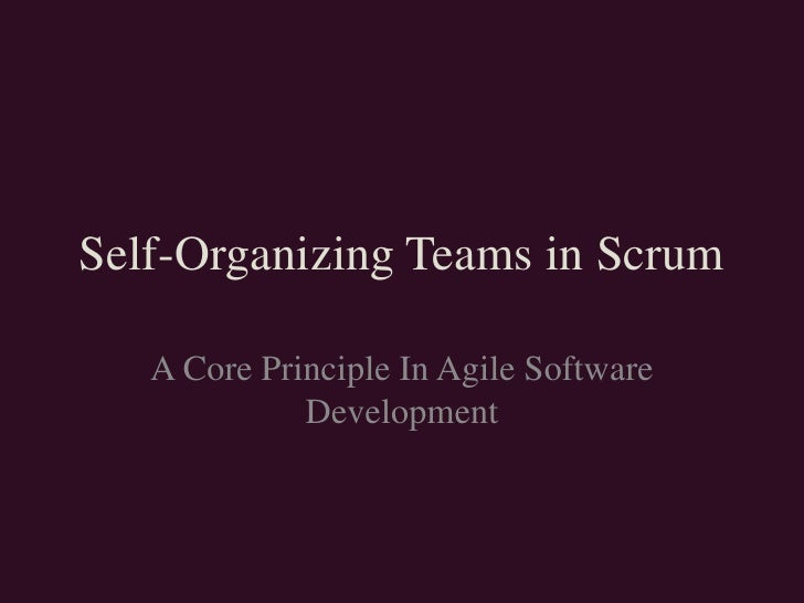 Self-Organizing Teams in Scrum<br />A Core Principle In Agile Software Development<br />