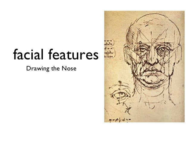 facial features  Drawing the Nose