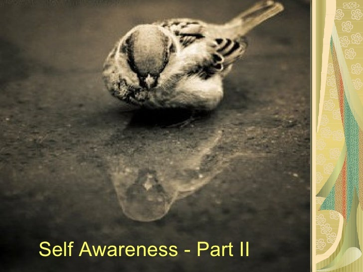 Self Awareness - Part II