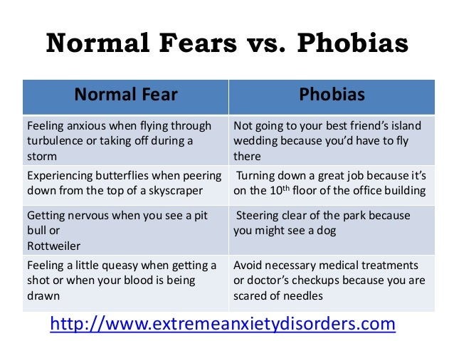 the three major types of phobias