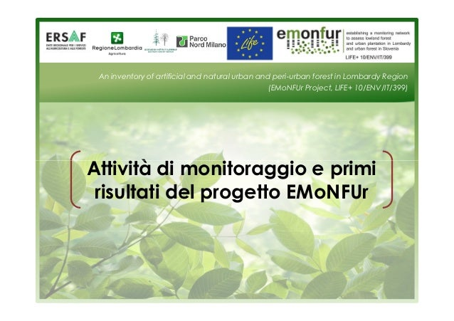 An inventory of artificial and natural urban and peri-urban forest in Lombardy Region  (EMoNFUr Project, LIFE+ 10/ENV/IT/3...