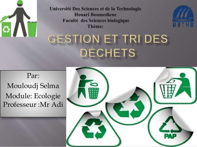 Par:  Mouloudj Selma  Module: Ecologie  Professeur :Mr Adi