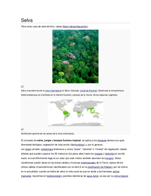 SelvaPara otros usos de este término, véase Selva (desambiguación).Selva macrotérmica de la zona intertropical en Barro Co...