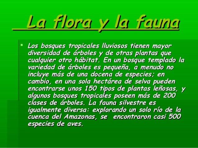 la flora y la faunala flora y la fauna los