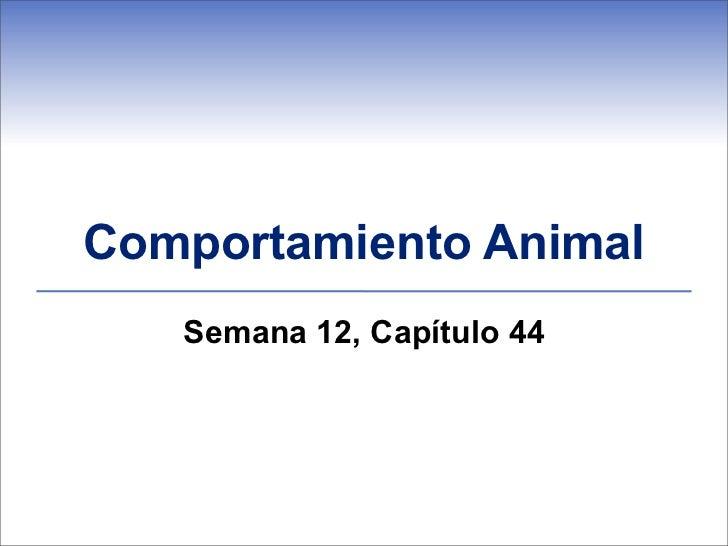 Comportamiento Animal   Semana 12, Capítulo 44