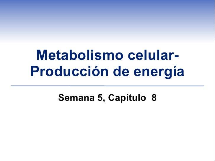 Metabolismo celular-Producción de energía   Semana 5, Capítulo 8