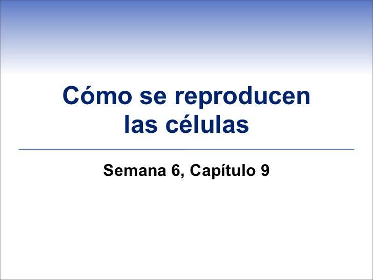 Cómo se reproducen   las células  Semana 6, Capítulo 9