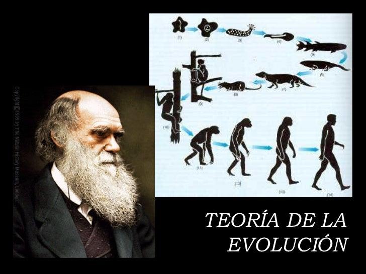 teor 205 a de la evoluci 211 n