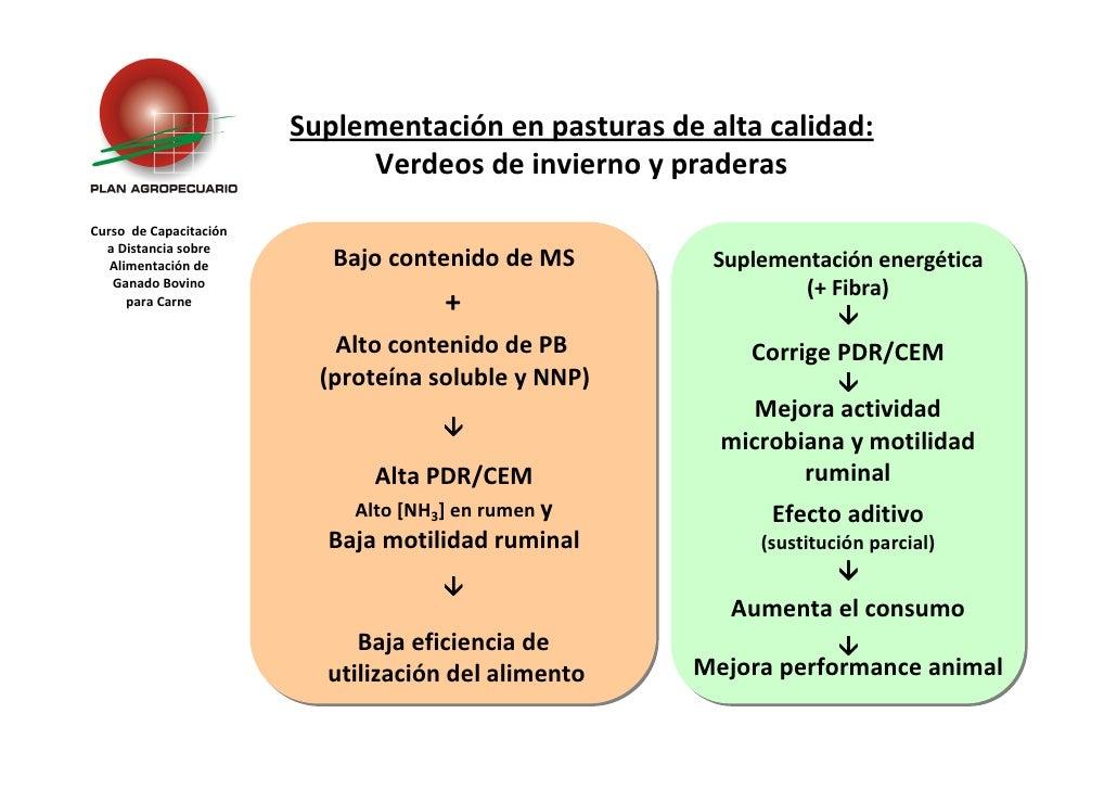 Suplementación en pasturas de alta calidad:                              Verdeos de invierno y praderas Curso de Capacitac...