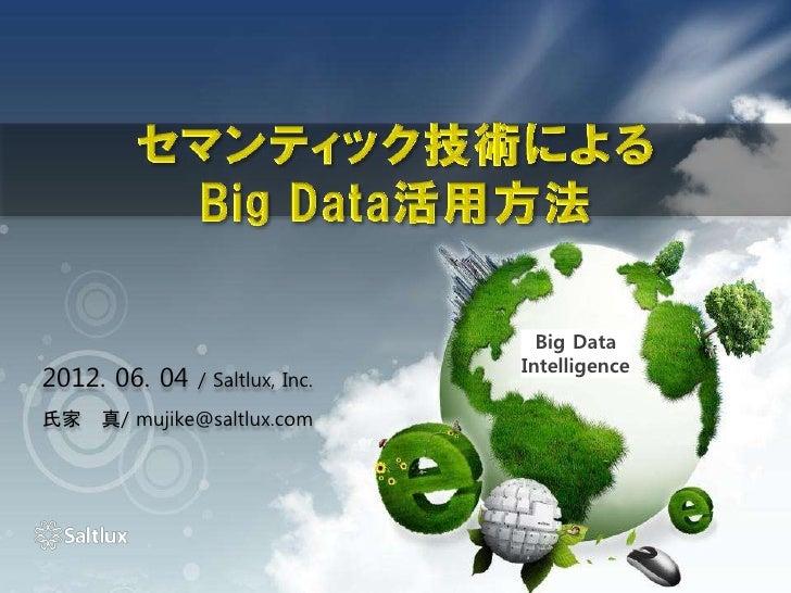 Big Data                                 Intelligence2012. 06. 04   / Saltlux, Inc.氏家 真/ mujike@saltlux.com