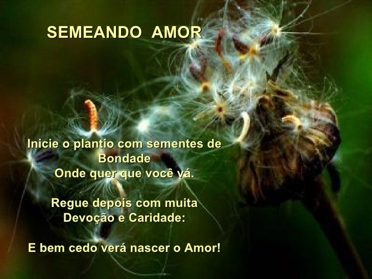 http://image.slidesharecdn.com/semeandoamor-100816212126-phpapp01/95/semeando-amor-1-728.jpg?cb=1281993722