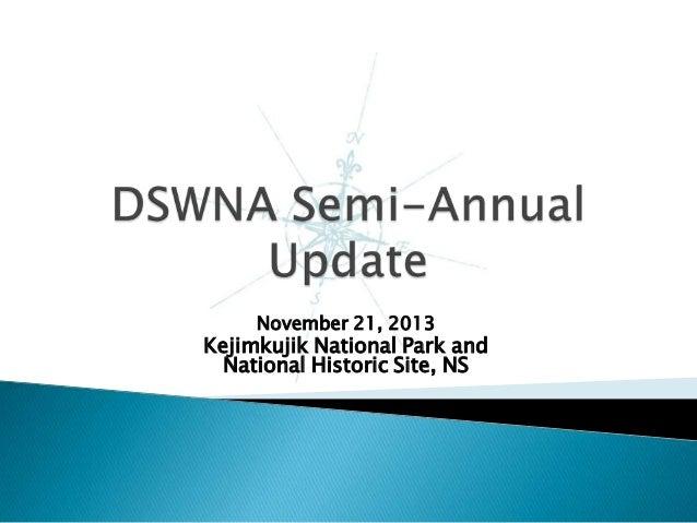 DSWNA Semi Annual-Update-November-2013