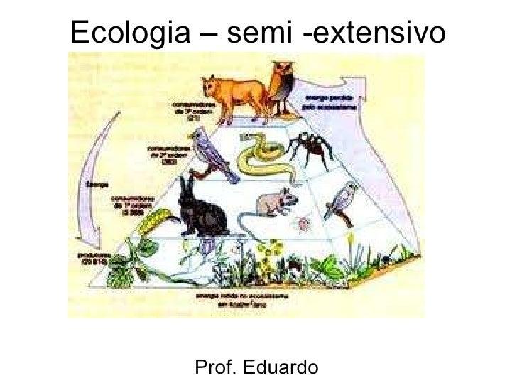 Ecologia – semi -extensivo Prof. Eduardo