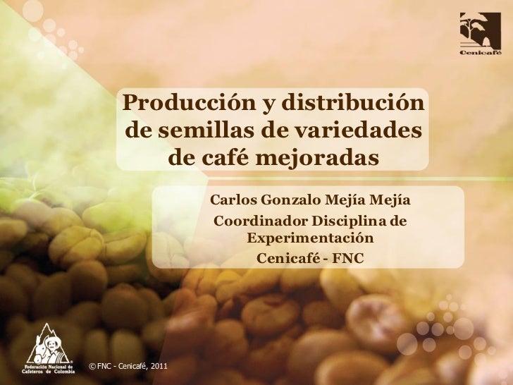 Producción y distribución         de semillas de variedades             de café mejoradas                         Carlos G...