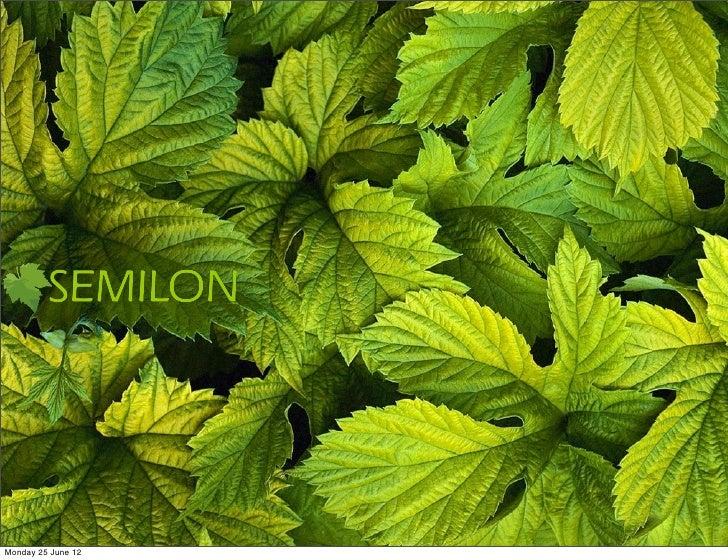 Semilon company profile