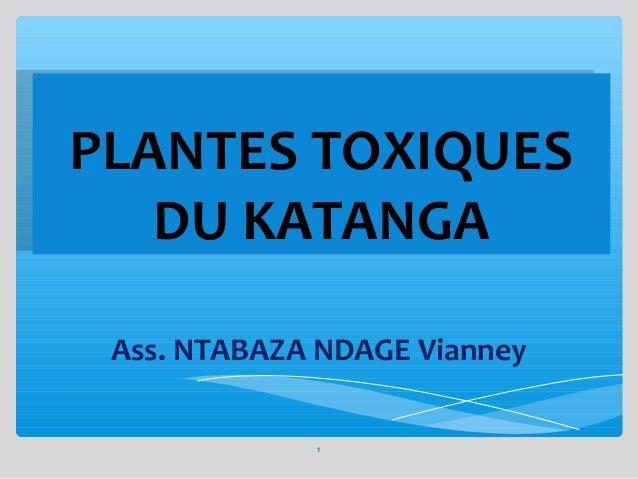 PLANTES TOXIQUES PLANTES TOXIQUES DU KATANGA DU KATANGA Ass. NTABAZA NDAGE Vianney 1
