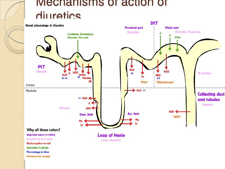 Carbonic >> Diuretics in CKD