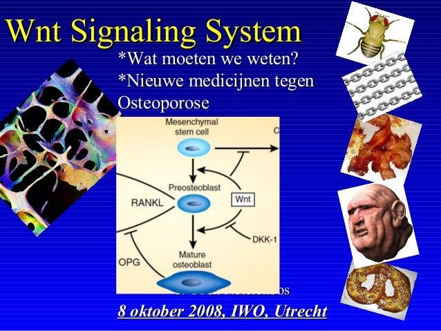 J. Coen NetelenbosJ. Coen Netelenbos 8 oktober 2008, IWO, Utrecht8 oktober 2008, IWO, Utrecht Wnt Signaling SystemWnt Sign...