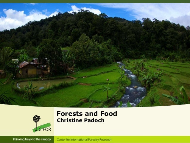 Seminar 13 Mar 2013 - Session 2 - Forests and food by CPadoch