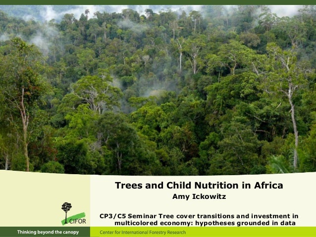 Trees and Child Nutrition in Africa                    Amy IckowitzCP3/C5 Seminar Tree cover transitions and investment in...