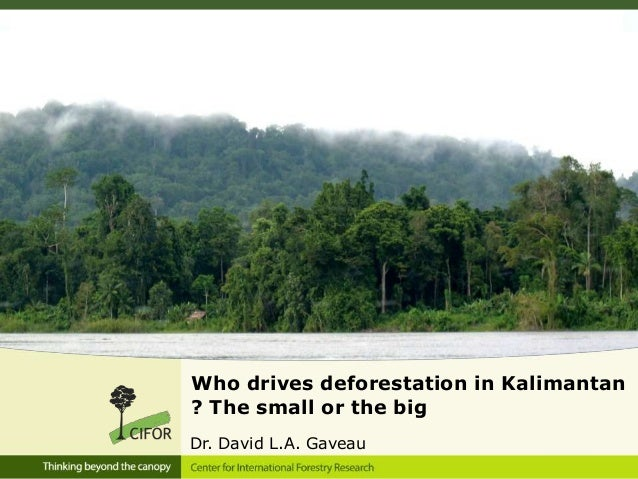 Who drives deforestation in Kalimantan? The small or the bigDr. David L.A. Gaveau