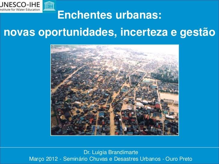 Enchentes urbanas:novas oportunidades, incerteza e gestão                          do risco                        Dr. Lui...