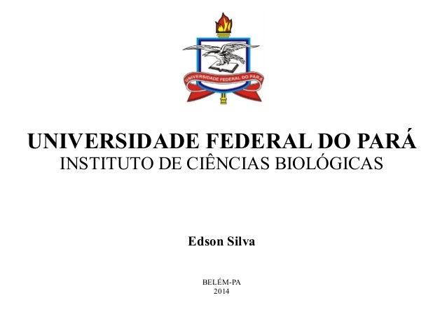 UNIVERSIDADE FEDERAL DO PARÁ  INSTITUTO DE CIÊNCIAS BIOLÓGICAS  Edson Silva  BELÉM-PA  2014