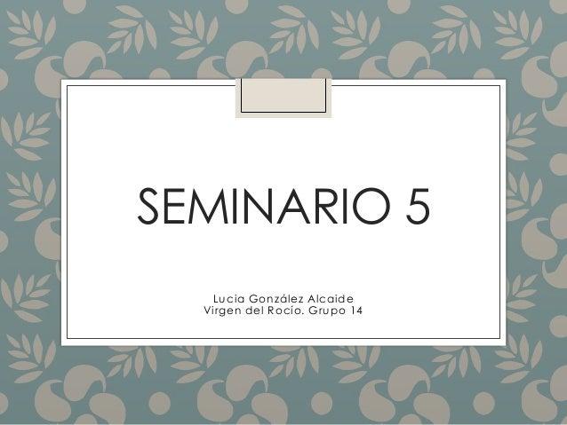 SEMINARIO 5 Lucia González Alcaide Virgen del Rocío. Grupo 14