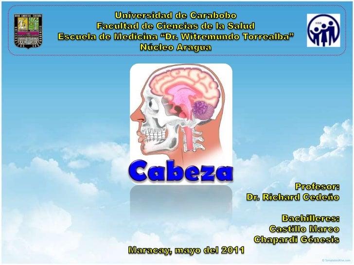 """Universidad de Carabobo<br />Facultad de Ciencias de la Salud<br />Escuela de Medicina """"Dr. WitremundoTorrealba""""<br />Núcl..."""