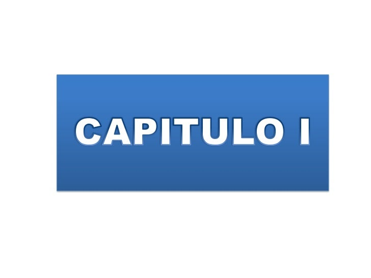 CAPITULO I<br />