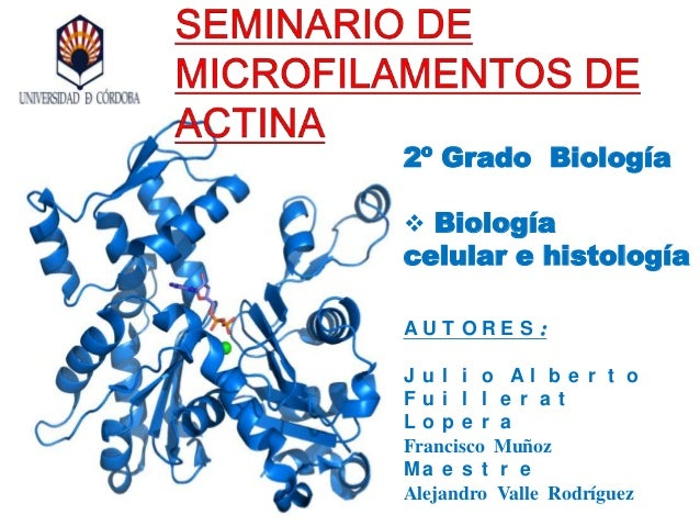 2º Grado Biología  Biología celular e histología A U T O R E S : J u l i o A l b e r t o F u i l l e r a t L o p e r a Fr...