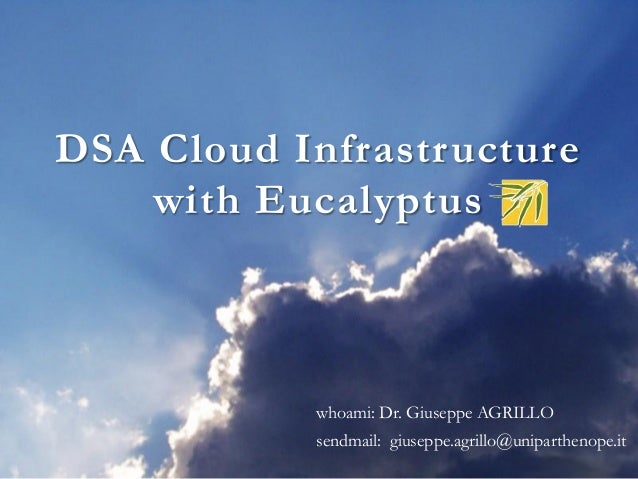 The cloud infrastructure with eucalyptus