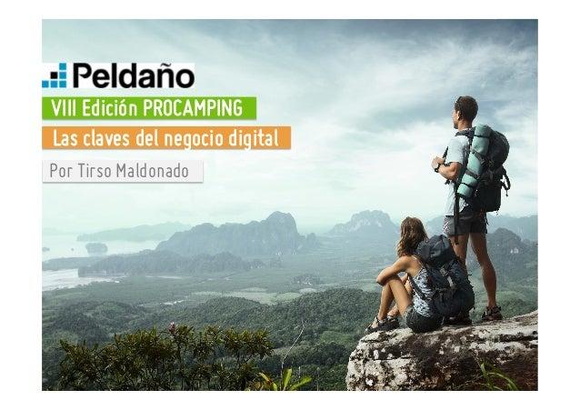 Seminario marketingonline campings (Tirso Maldonado). Procamping Lleida