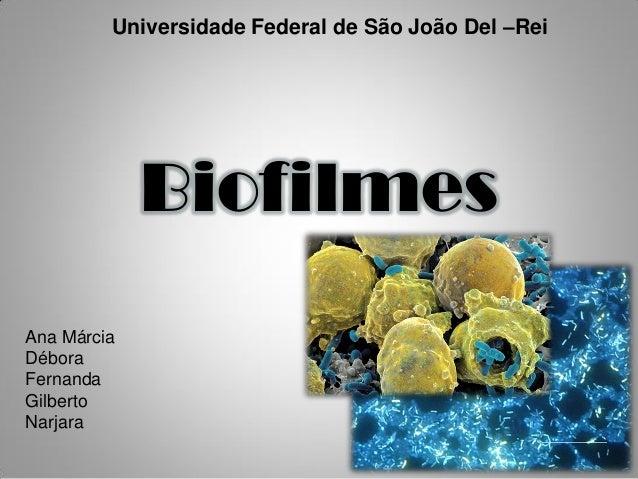 Universidade Federal de São João Del –Rei Biofilmes Ana Márcia Débora Fernanda Gilberto Narjara