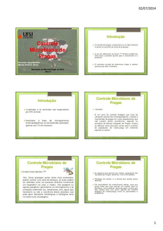 02/07/2014 1 Controle Microbiano de Pragas Controle Microbiano de Pragas Fernanda Goes Mendes Marina Chamon Abreu Seminári...
