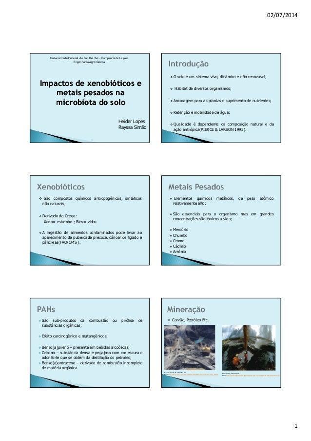 02/07/2014 1 Universidade Federal de São Del Rei - Campus Sete Lagoas Engenharia Agronômica Impactos deImpactos de xenobió...