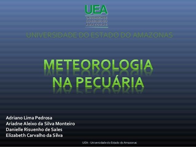 UNIVERSIDADE DO ESTADO DO AMAZONASAdriano Lima PedrosaAriadne Aleixo da Silva MonteiroDanielle Risuenho de SalesElizabeth ...