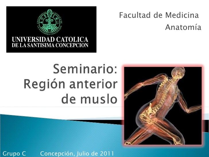 Facultad de Medicina  Anatomía Concepción, Julio de 2011  Grupo C